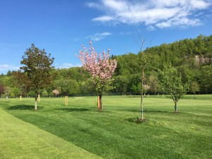 Golf_Roznov_pod_Radhostem_03.JPG