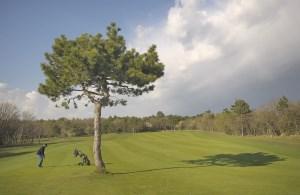Golf_Club_Trieste_03.jpg