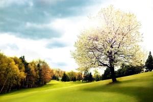 Golf_Resort_Praha_Motol_04.jpg