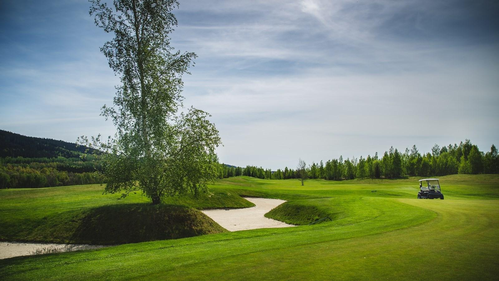 Golf_Sokolov_03.jpg